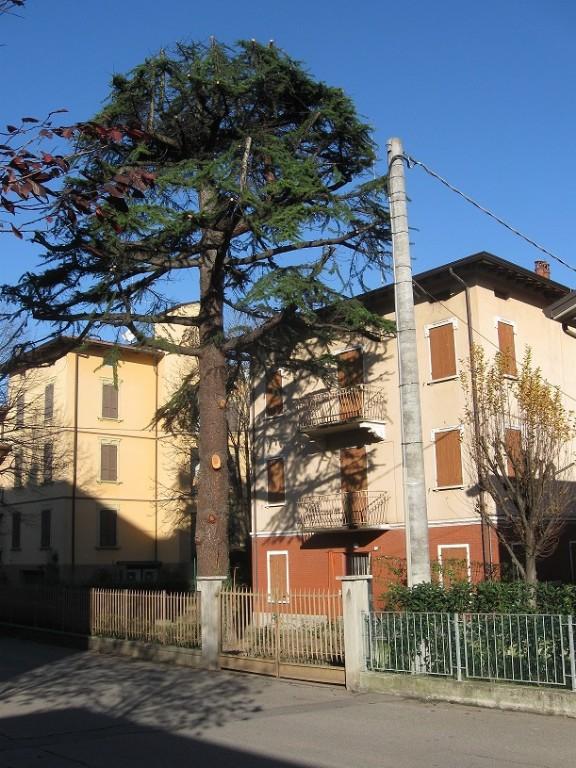 CASA SINGOLA in zona Ospizio a Reggio Emilia